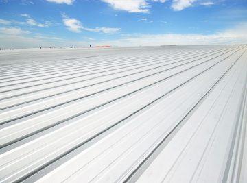 MaxSEAM® Roof System